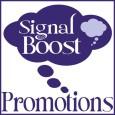 Copy of signalboostborder