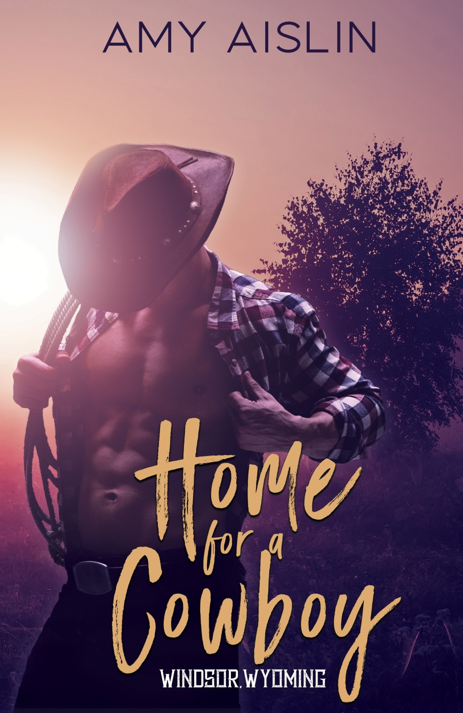 EBook---Home-for-a-Cowboy